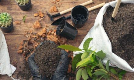 Mettez-vous au vert avec la gamme de produits by-pixcl «autour du jardin» !